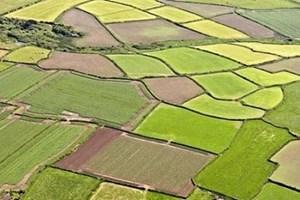 Tarım arazileri EŞYA oldu