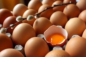 Yumurtadaki düşüş dikkat çekti