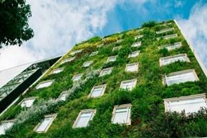 Çevre dostu yeşil bina sayısı git gide artıyor