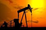 Petrol yılı 50 doların altında kapatacak!