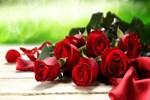 Gül sektöründe güller açıyor