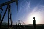 Petrol fiyatlarında dengesizlik sürüyor
