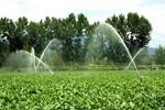 400 bin dekar arazi 218 milyon liraya mal oldu!