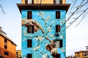 Sokak sanatını birde böyle görün!