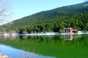 Bolu'da 51 bin hektar yeşil alan imara açıldı!