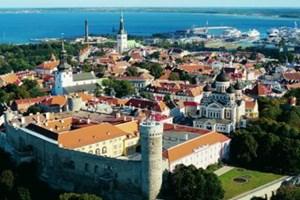 Estonya sınır ihlallerine karşı duvar örmeye karar verdi