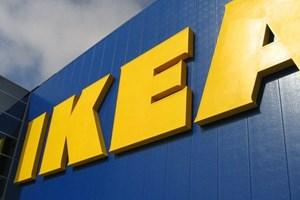 Dev hareket! IKEA orman satın aldı