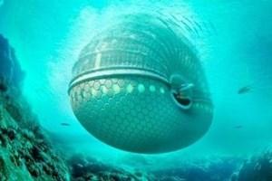 Tatilinizi denizin altında yapmak ister misiniz?