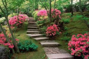 Cennet bahçelerinde oturmayı kim istemez ki?