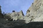 Yusufeli Barajı'nın inşaatında profesyonel dağcılar çalışıyor!