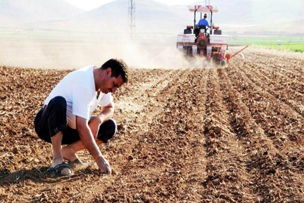 Çiftçilerin destek ödemeleri yarın başlıyor