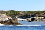 Karadeniz'in Kefken Adası turizme açılmayı bekliyor