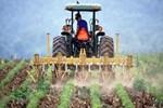 Çiftçi Kayıt sistemi'ne başvurular 31 Aralık'a kadar uzatıldı