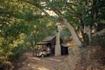 Gözlerinize inanamayacaksınız! 13 metrekarelik orman evi