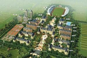 300 dönüm arazide 80 futbol sahası!