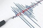 7.9 büyüklüğünde deprem! Tsunami bekleniyor