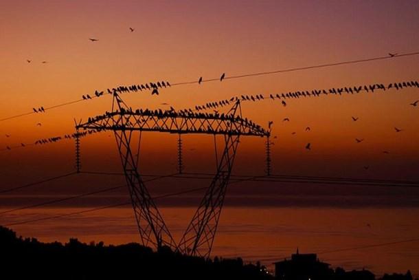 30 Mayıs'ta elektrik kesintisi uygulanacak