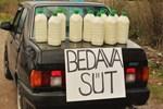 Gıda Bakanı açıkladı: Çiğ süt satmak yasak değil