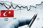 Çok kritik Türkiye açıklaması!