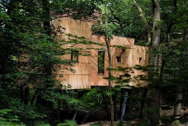 Ağaç ev olduğuna aldanmayın! Ülkenin en lüks evi