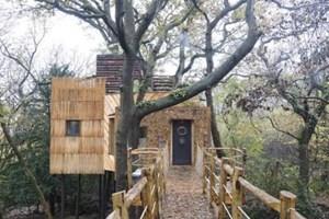 Dünyanın en lüks ağaç evi!