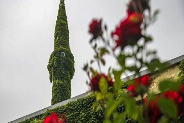 Adana'nın Köprüköy Camisi yeşile büründü!