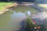110 bin TL'ye evinin bahçesine doğal göl yaptı!