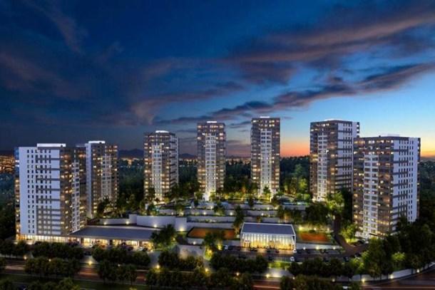 Kaşmir Yonca: Yeni proje! Ön talep toplanıyor!