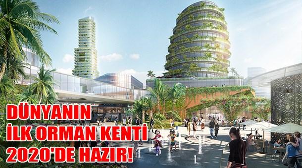 Dünyanın ilk orman kenti 2020'de hazır!