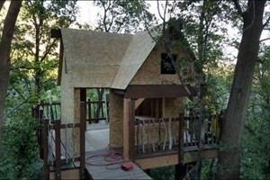 Çocukları için ormana ağaç ev inşa etti!