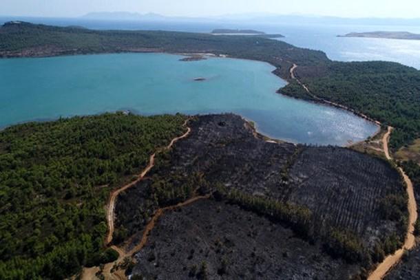 Alevler 3 hektar alanı yuttu!