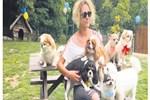 Geceliği 150 liraya 'köpek oteli'