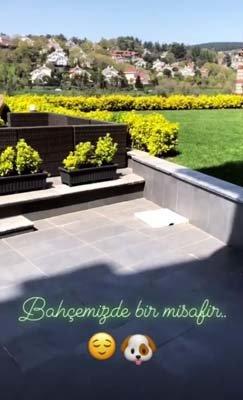 Çift, evlendikten sonra Beykoz'da 4 katlı, bahçeli ve havuzlu bir villa kiraladı.<br /> <br />